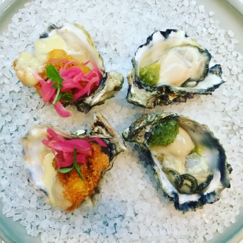 fish-co-valentines-oysters-1200x1200px